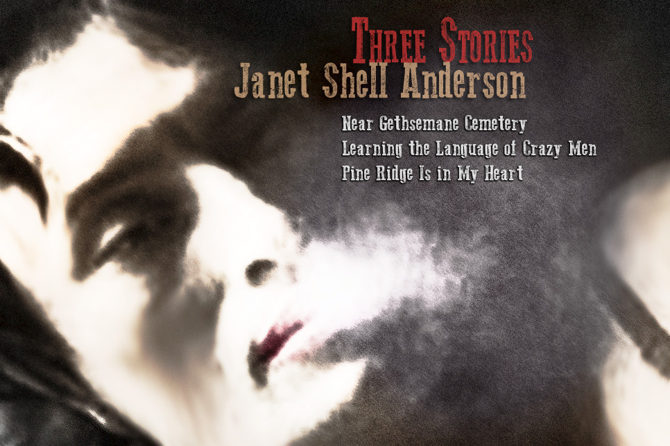 Artwork for Janet Shell Anderson's stories