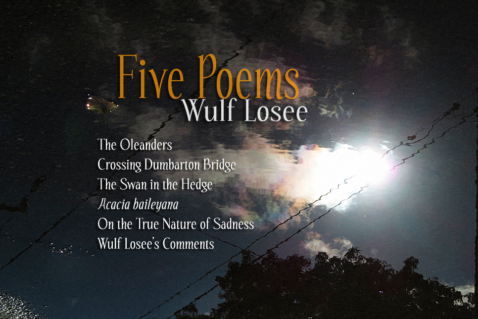 Artwork for Wulf Losee's poems